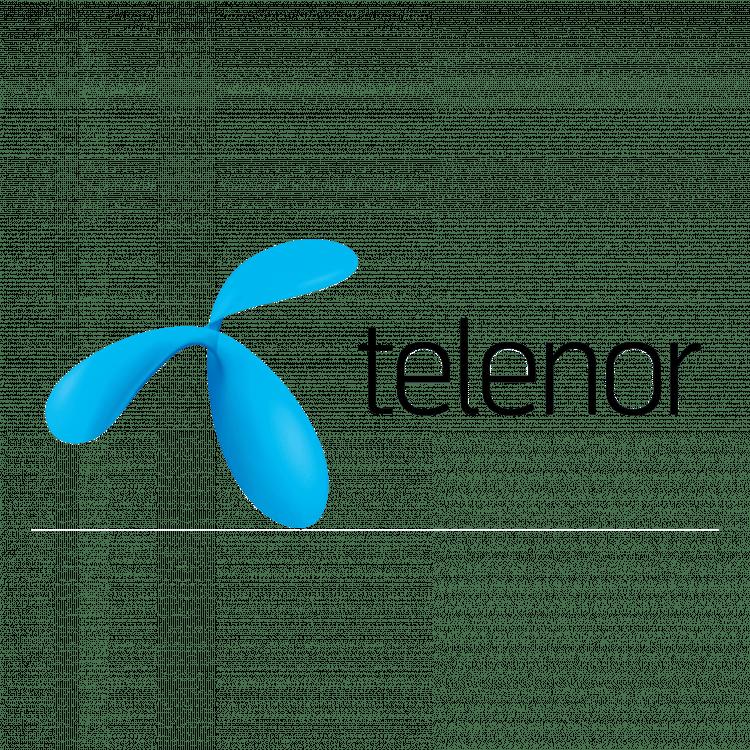 Referens för företagsevent - Telenor
